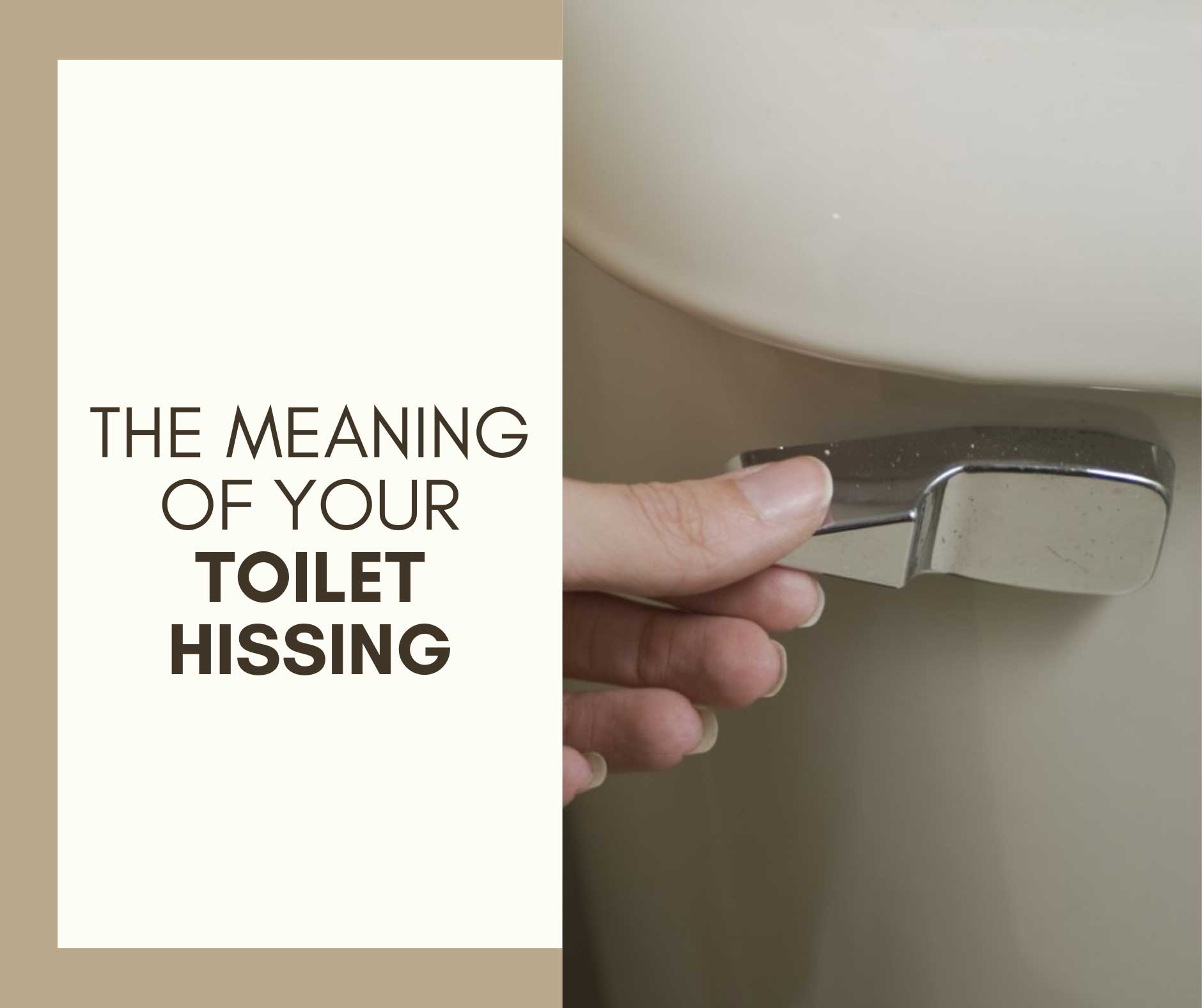 Toilet Hissing